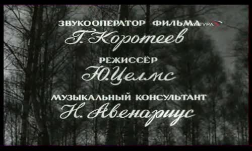Моцарт и Сальери (фильм-опера)